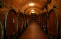 florence_guide_wine_cellars_wine_tasting_tour_chianti_tuscany.jpg